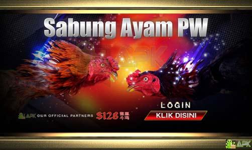 Daftar Agen Judi S128 Sabung Ayam PW » Video Ayam Laga